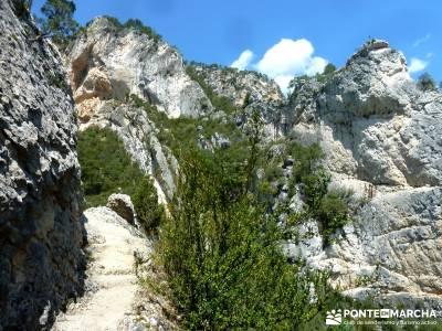 Hoz de Tragavivos; actividades culturales en madrid;rutas guadalajara;gr 10 madrid